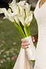 Thumbnail of Bride holding Bouquet